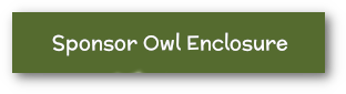 Sponsor our Owl Enclosure